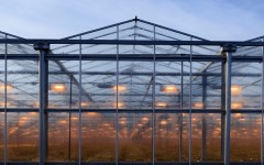 side view of an agricultural greenhouse